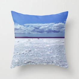 Salty horizon Throw Pillow