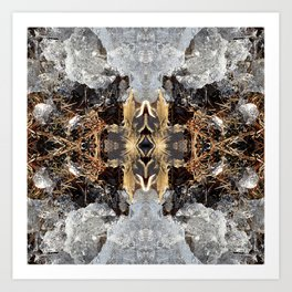 Diamond Ice Frozen Autumn - Debra Cortese photo art Art Print