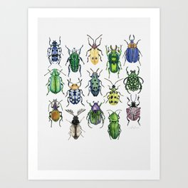 Colourful Bugs Art Print