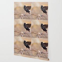 Spotless starling Wallpaper
