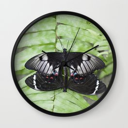 Mating Swallowtail Butterfly Wall Clock