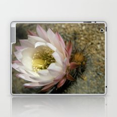 Cactu Flower Laptop & iPad Skin