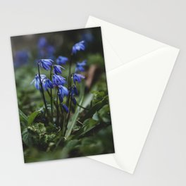 Just after the Rain  Stationery Cards