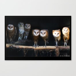 Owls the family Canvas Print