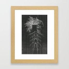 Population Normal Framed Art Print