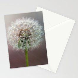 Moment of tranquility Stationery Cards