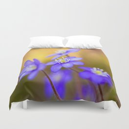 Spring Wildflowers, Beautiful Hepatica in the forest on a sunny and colorful background Duvet Cover