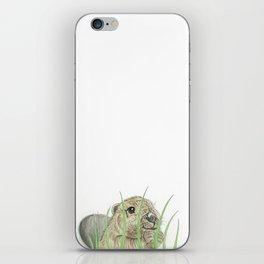 Peekaboo Beaver iPhone Skin