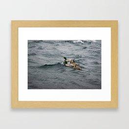 Ducks on Rough Water Framed Art Print