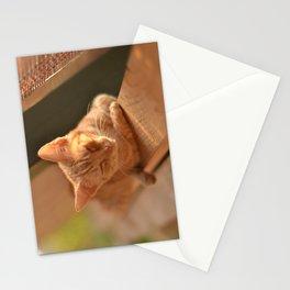 Sweet Oblivion Stationery Cards