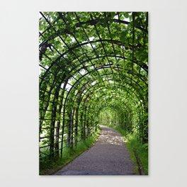 Walkway Canvas Print