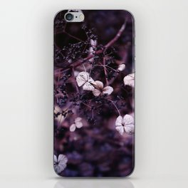 Small treasures iPhone Skin