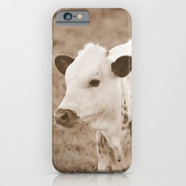 Spotted Long Horn Calf Photograph iPhone Case