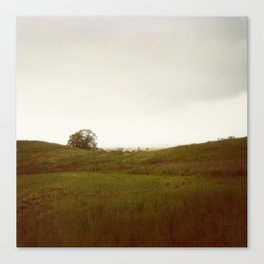 Sonoma Polaroid Canvas Print