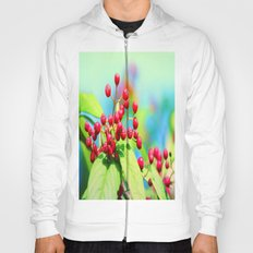 Red autumn berrys Hoody