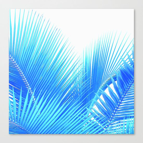 Winter Palm Canvas Print