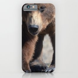 Alaskan Grizzly Bear - Spring iPhone Case