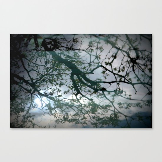 tree mystery Canvas Print