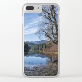 Leaves Fallen on Fish Lake Clear iPhone Case