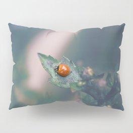 Coccinellidae Pillow Sham