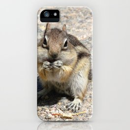 Watercolor Golden-Mantled Ground Squirrel 05, Dunraven Trail, Colorado, Two-Handed Lift iPhone Case