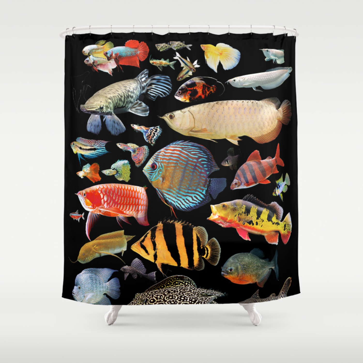 Freshwater Tropical Fish Shower Curtain