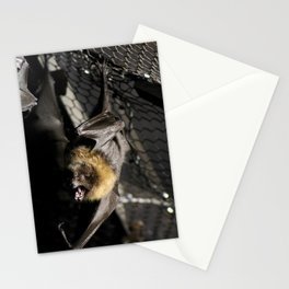 Hangin' On Stationery Cards