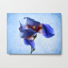 Iris Dance Metal Print