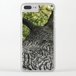 cottonwood at lakeside park Clear iPhone Case