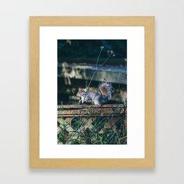 Ardilla en un parque de Londres Framed Art Print