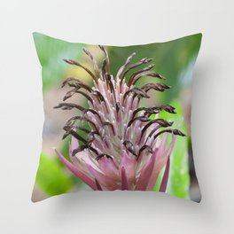 Bromeliad in Pink Throw Pillow