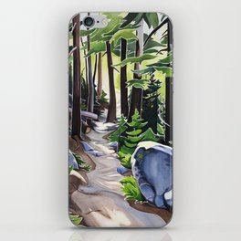 Stay on the Path iPhone Skin