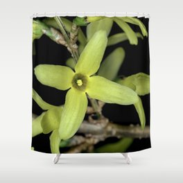 Forsythia Close up Shower Curtain