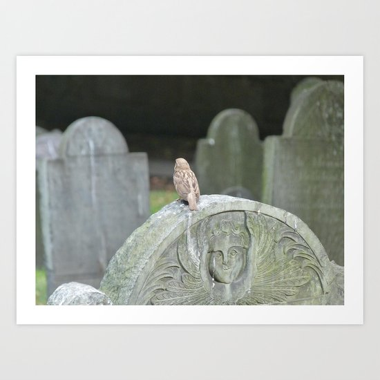 Sparrow in King's Chapel Burying Ground Boston Art Print