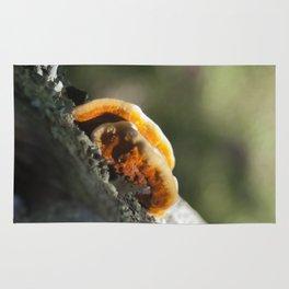 Mushroom Fence Rug