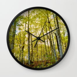 Birches in Autumn Light Wall Clock