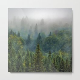 Misty Forest Beauty Metal Print