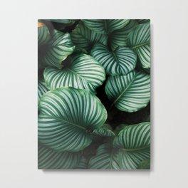 Nature Poster, Wood Wall ART, Framed Wall Art, Duvet Cover, Pillow Sham Metal Print