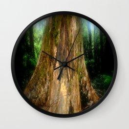 Mountain Ash (Eucalyptus Regnans) Wall Clock