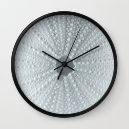 Splendid Blue Sea Urchin by Murray Bolesta! Wall Clock