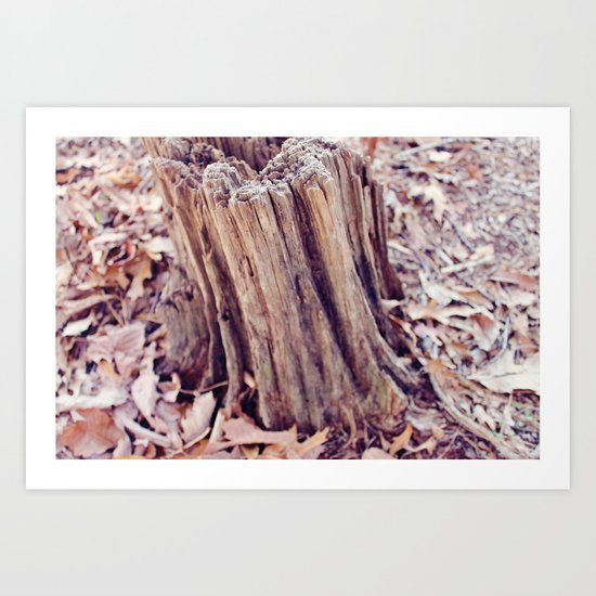 Fairy Wood Art Print