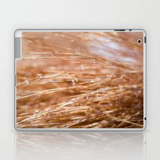Fire Grass Laptop & iPad Skin