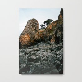 California North Coast VI Metal Print