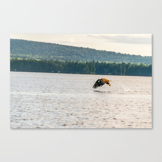 Master Fisher Canvas Print