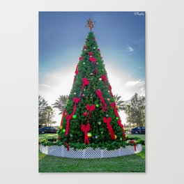 Xmas Tree in Tradition Town Square PSL Canvas Print