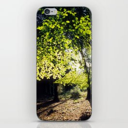 The Woods in Spring iPhone Skin