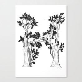 "Native Texas Plants ""H"" Canvas Print"