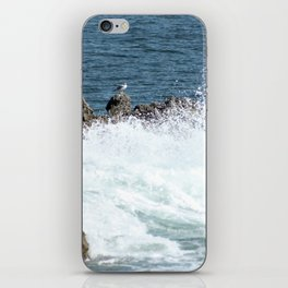 Lonely Seagull iPhone Skin
