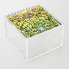 GeoBotanica V2 Acrylic Box