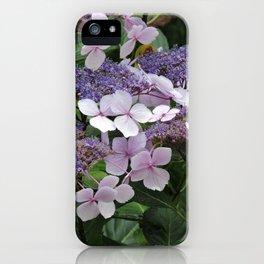 Hydrangea Violet Hues iPhone Case